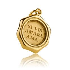 Expressiver Schmuck Gold Anhänger SI VIS AMARI AMA